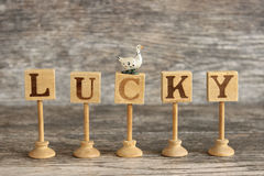 Lucky Duck Royalty Free Stock Images