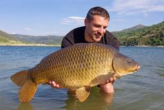 Carp fishing. Catch and release. Lucky fisherman holding a big common carp. Freshwater fishing. Catch of fish stock photo