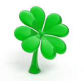 Lucky four leaf clover. Over white Royalty Free Stock Images