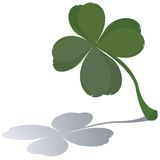 Lucky four leaf clover Stock Photography