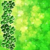 Lucky Four Leaf Clover Shamrock Blur Background Royalty Free Stock Photos