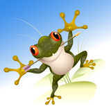 The lucky frog Royalty Free Stock Photography
