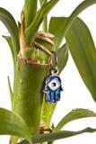 Lucky hamsa. Hamsa with blue eye protection from evil on lucky bamboo plant stock photos