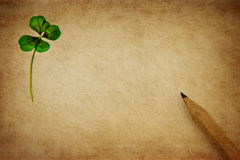 Lucky letter. Pressed four-leaved clover on aged parchment paper with wooden pencil royalty free stock photos