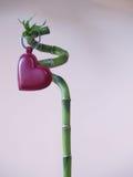 Lucky Love - corazón del amor y palillo 1 del bambú Imágenes de archivo libres de regalías