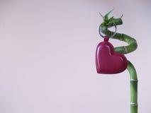 Lucky Love - corazón del amor y palillo 2 del bambú Imagen de archivo libre de regalías