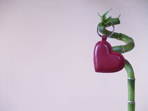 Lucky Love - förälskelsehjärta & bambupinne 2 Royaltyfri Bild