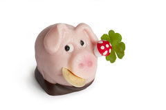 Lucky marzipan pig with cent, cloverleaf and mushroom. Isolated on white background, new year Stock Image