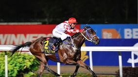 Lucky Nine winning the Krisflyer International Sprint 2013 Stock Photos