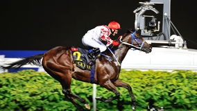 Lucky Nine winning the Krisflyer International Sprint 2013 Stock Photo