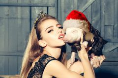 Lucky Pig. Chinese New Year. 2019. The year of the pig. Womans with baby pig with christmas hat celebrating Chinese New stock photo