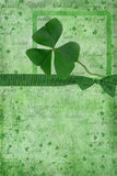 Lucky Shamrock Royalty Free Stock Photos