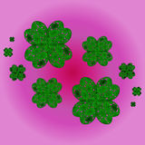 Lucky shamrocks on a clover with four leaves Stock Photos