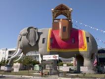 Lucy el elefante imagen de archivo libre de regalías