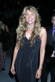Lucy Lawless. Warner Brothers Post Grammy Party Pacific Design Center Los Angeles, CA February , 2006 Stock Photos