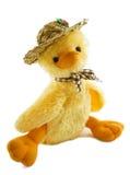 luddig sötsak för duckling Royaltyfri Fotografi