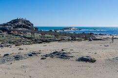 Luderitz Namibia, Lipiec, - 09 2014: Drewniany przejście prowadzi do Diaz punktu na skałach przy morzem na Luderitz półwysepie Obrazy Stock