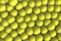Yellow celular relief 3d in shadows. Ludic and infant image of scientific inspiration to teach a complete group Stock Illustration