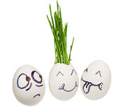 Ludicrous image. Chicken egg with a germinating grass.  Ludicrous image of in love persons Royalty Free Stock Photo