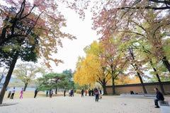 ludowego gyeongbokgung muzeum pałacu krajowego Korei Obraz Royalty Free