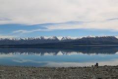 Ludowy strumień, Newzealand Obrazy Stock