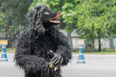Ludowy tancerz ubierał jako niedźwiadkowy wmarsz past Obrazy Royalty Free