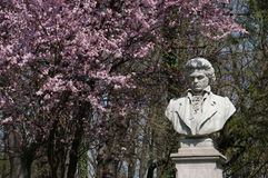 Ludwig van Beethoven arkivbilder