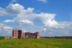 Ludza-Schloss Lizenzfreie Stockbilder