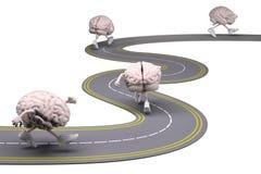 Ludzcy mózg z rękami, nogami i sneackers na jego ciekach, zdjęcie stock