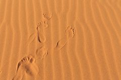 Ludzcy odciski stopy na pustynnym falistym piasku Zdjęcia Royalty Free