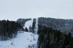 Ludzie angażują w halnym narciarstwie i jazda na snowboardzie na narta śladzie Obraz Royalty Free