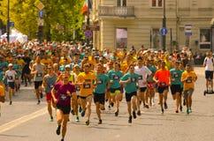 Ludzie biega dla najlepszy healht i dla sporta zdjęcie stock