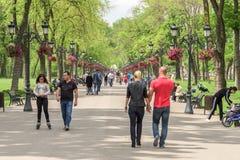 Ludzie Bierze spacer Na Gorącym letnim dniu W Mogosoaia Jawnym parku Zdjęcia Stock