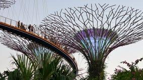 Ludzie biorą obrazki na Skyway w ogródach zatoką w Singapur zbiory wideo