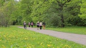 Ludzie chodzą w miasto parku wokoło pola z dandelions Wiosna zbiory