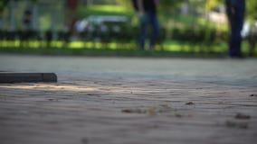 Ludzie chodzi publicznie parkowego, nogi i cieki widoków, zdjęcie wideo