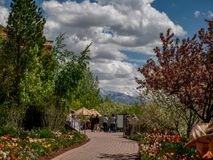 Ludzie chodzi wzdłuż ścieżki w ogródzie z nakrywać górami w tle zdjęcie stock