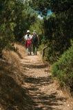 Ludzie chodzi wzdłuż brud ścieżki wśród krzaków i drzew zdjęcia stock