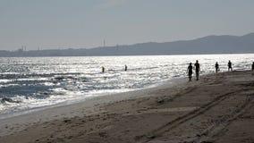 Ludzie cieszy się morze zbiory