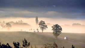 Ludzie iść pracować w samochodach na drodze przy wschodem słońca w mgle zbiory wideo