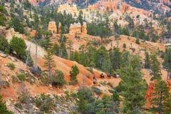 Ludzie jeździeckich koni w Bryka jaru parku narodowym, Utah, usa Zdjęcia Royalty Free