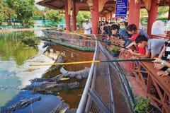 Ludzie karmi krokodyle w Suoi Tien parku Zdjęcie Stock