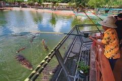 Ludzie karmi krokodyle w Suoi Tien parku Zdjęcia Stock
