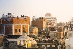 Ludzie lata kanie od ich dachów w starym Delhi Jaipur mieście Zdjęcie Royalty Free