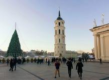 Ludzie ma zabawę na Vilnius bożych narodzeń rynku na katedra kwadracie Zdjęcia Royalty Free