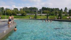 Ludzie ma zabawę w basenie Obraz Royalty Free