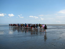 ludzie morza chodzącym Zdjęcie Stock