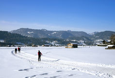 Przecinającego kraju narciarstwo Oberstdorf Zdjęcia Royalty Free