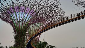 Ludzie na Skyway w ogródach zatoką w Singapur zbiory