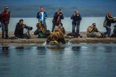 Ludzie, niedźwiedź i ryba, Obraz Royalty Free